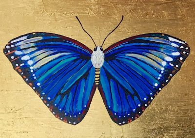 Madame Butterfly by Rachael Holton